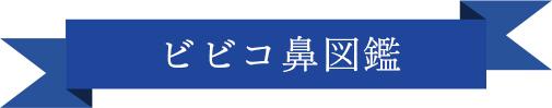 ビビコ鼻図鑑